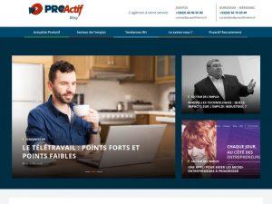 ecran blog ProActif jpg 1024x768 300x225 - Un Blog pour l'emploi et contre les préjugés